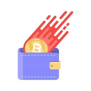 Bitcoin Wallet: The Complete Guide